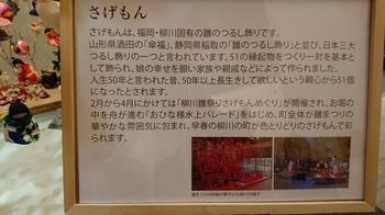 DSC_0271.JPG