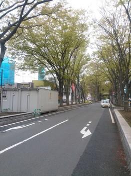 NCM_0478.JPG